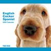 THE DOG逆輸入カレンダー イングリッシュ・コッカー・スパニエル 2009