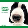 THE DOG逆輸入カレンダー イングリッシュ・スプリンガー・スパニエル 2009