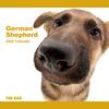 THE DOG逆輸入カレンダー ジャーマン・シェパード・ドッグ 2009