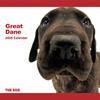 THE DOG逆輸入カレンダー グレート・デーン 2009