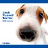 THE DOG逆輸入カレンダー ジャック・ラッセル・テリア 2009