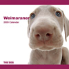 THE DOG逆輸入カレンダー ワイマラナー 2009